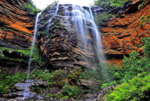 Fotos Australien Wasserfall Felsen Wentworth Falls Natur