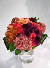 Hintergrundbilder Blumensträuße Calla palustris Rosen Hortensien Vase Blumen