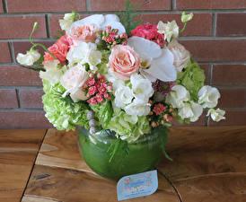Fotos Blumensträuße Rose Freesien Hortensie Orchidee Wand Vase Blüte