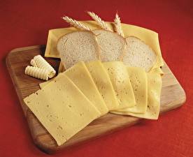 Fotos Brot Käse Schneidebrett Ähre Geschnitten