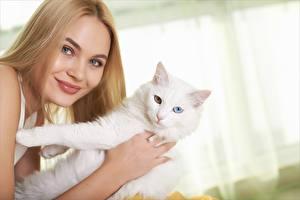 Fonds d'écran Chat domestique Regard fixé Blanc Animaux Filles