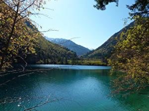 Fotos China See Gebirge Wald Panda Lake Natur