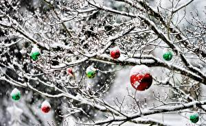 Photo New year Branches Snow Balls