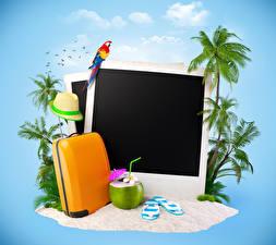 Image Coconuts Parrots Suitcase Palm trees Hat Tourism 3D Graphics