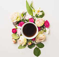 Wallpaper Coffee Roses Carnations Cup Flowers Food