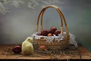 Fotos Ostern Hühner Weidenkorb Ei Stroh das Essen