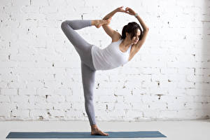Bilder Fitness Mauer Braune Haare Trainieren Unterhemd Mädchens Sport