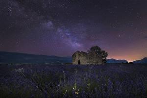 Hintergrundbilder Frankreich Felder Lavendel Himmel Stern Ruinen Nacht Valensole Natur