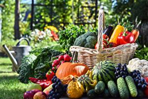 Image Fruit Vegetables Cucumbers Grapes Watermelons Pumpkin Wicker basket Food