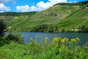 Bilder Deutschland Flusse Acker Hügel Moselle Natur