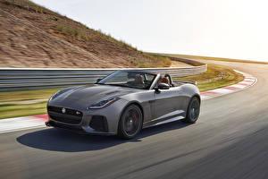 Bilder Jaguar Graues Cabriolet Bewegung 2016 F-Type SVR convertible Autos