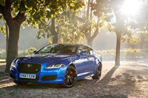 Fotos Jaguar Metallisch Blau 2017 XJR575 Autos