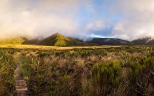 Fotos Neuseeland Gebirge Gras Weg Mount Egmont Taranaki Natur
