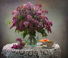 Fotos Stillleben Flieder Marmelade Blumensträuße Vase Tasse Blumen