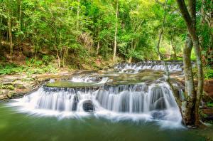 Sfondi desktop Thailandia Tropici Parco Cascata Alberi Sam lan waterfall Saraburi Natura