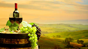 Pictures Wine Grapes Barrel Bottles Stemware