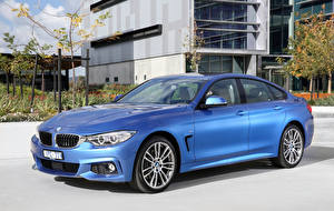 Photo BMW Light Blue 2016 430i Gran Coupe M Sport Package Cars