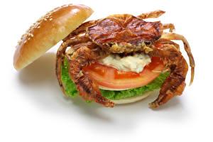 Hintergrundbilder Krabben Gemüse Burger Weißer hintergrund das Essen