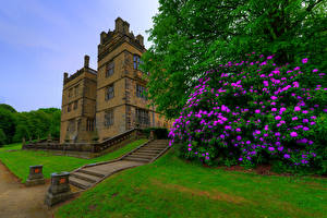 Pictures England Houses Rhododendron Palace Staircase Shrubs Gawthorpe Hall Padiham Cities