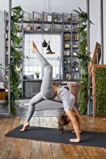 Fonds d'écran Fitness Gymnastique Aux cheveux bruns Activité physique Jambe Filles Sport