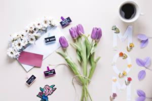 Bilder Feiertage Tulpen Kaffee Farbigen hintergrund Tasse Blumen