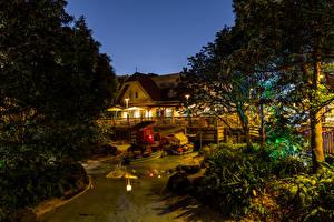 Photo Japan Disneyland Parks Building Pond Design Night Trees Nature