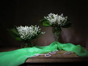 Hintergrundbilder Maiglöckchen Perlen Vase Zwei Blüte