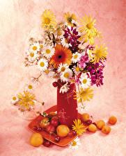 Bilder Stillleben Sträuße Gerbera Kamillen Aprikose Kirsche Vase Blumen