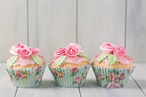 Bilder Süßigkeiten Rosen Cupcake Bretter Drei 3 Design