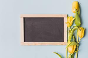 Bilder Tulpen Farbigen hintergrund Vorlage Grußkarte Gelb Blüte