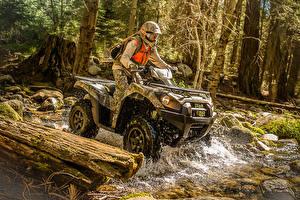 Fotos ATV Mann Wälder Helm  Motorrad