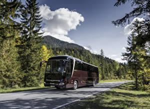 Bilder Omnibus Bordeauxrot Metallisch  Autos