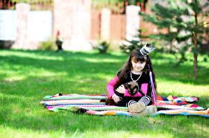 Fotos Katzen Krone Kleine Mädchen Uniform Sitzt Starren Kinder