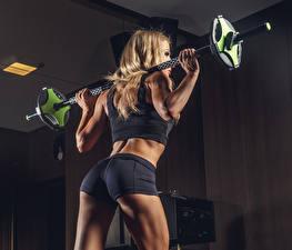 Fotos Fitness Trainieren Hantelstange Hinten Shorts Gesäß Mädchens Sport