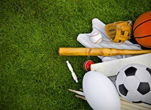 Fotos Rasen Ball Baseballschläger sportliches