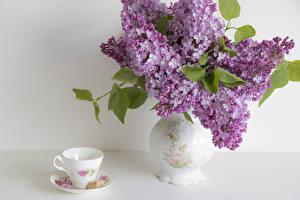 Fotos Flieder Stillleben Süßigkeiten Vase Tasse Blumen