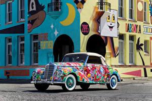 Fotos Mercedes-Benz Fahrzeugtuning Cabrio 220 Cabriolet A  Earthly Paradise  Art Car by Hiro Yamagata Autos