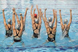 Hintergrundbilder Schwimmbecken Rücken Hand Trainieren Mädchens Sport