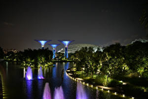 Pictures Singapore Gardens Night Trees Gardens by the Bay Nature