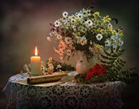 Bilder Stillleben Sträuße Kamillen Kerzen Mehlbeeren Noten Tisch Blumen