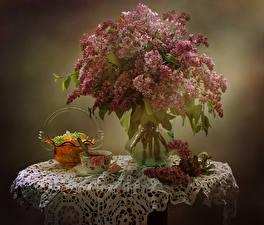 Fotos Stillleben Flieder Vase Ast Tasse Blumen Lebensmittel