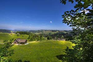 Hintergrundbilder Schweiz Felder Haus Hügel Ast St. Gallen Natur