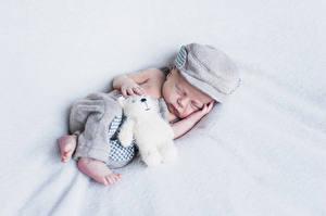 Fotos Teddybär Säugling Schlafende Mütze Kinder