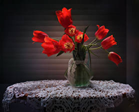 Bilder Tulpen Tisch Vase Rot Blumen