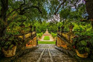 Bilder Vereinigte Staaten Park Springbrunnen Florida Miami Ast Strauch Treppe Natur
