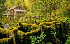 Bilder USA Fluss Washington Laubmoose Wassermühle Cedar Creek Grist Mill Natur