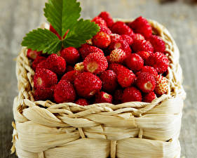 Hintergrundbilder Beere Hügel-Erdbeere Viel Weidenkorb Lebensmittel