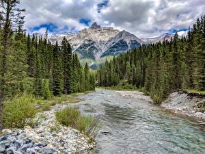 Fotos Kanada Park Gebirge Wälder Flusse Steine Banff Fichten Natur
