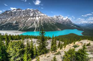 Bilder Kanada Park Gebirge See Landschaftsfotografie Banff Peyto Lake