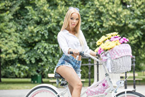 Images Chrysanths Blonde girl Wicker basket Staring Bicycles Shorts Girls